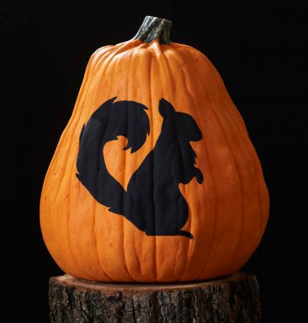 Squirrel Pumpkin