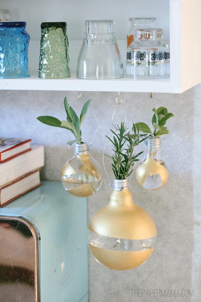 Hanging Lightbulb Herb Vase