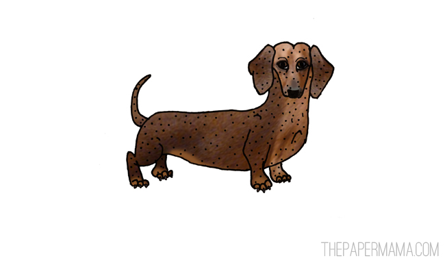 dachshund // thepapermama.com