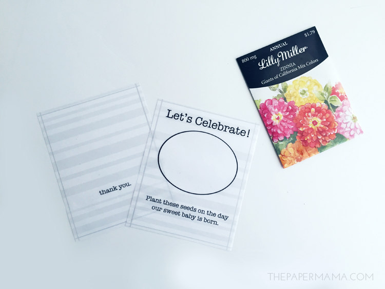 Seed Packet Party Favor DIY