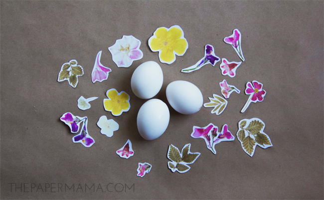 Decoupage Eggs with Free Pressed Flower Printable // thepapermama.com