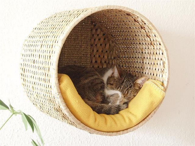 Sometimes there's just too much stuff on the floor and cats like being up high anyway, so this cat bed made from a basket and installed on the wall is wonderful! Might not be strong enough for my 20 pound cat, but it's cute. Found on Flickr from Silfide.