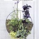Mini Herb Garden // thepapermama.com