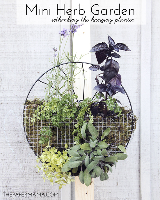 Rethinking The Hanging Planter // thepapermama.com