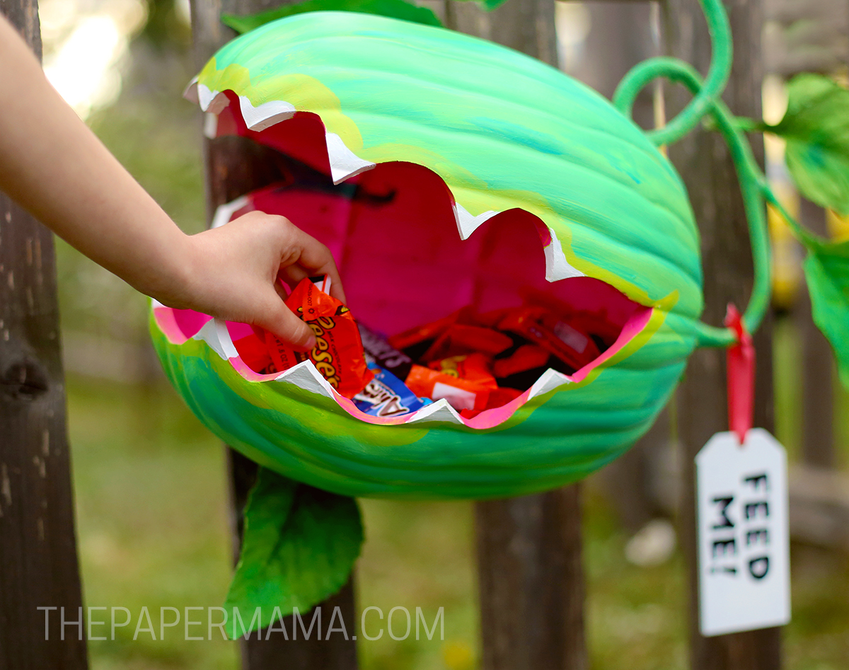 Venus Fly Trap Pumpkin Candy Holder Diy The Paper Mama