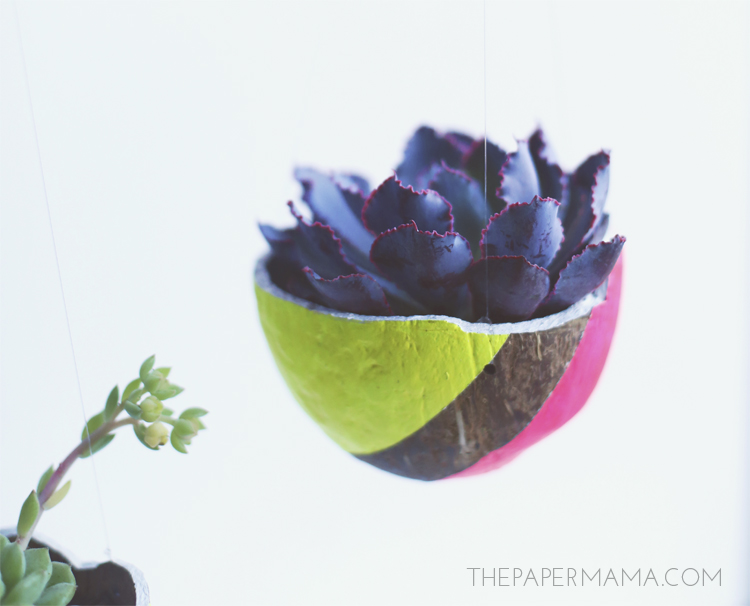 Neon Hanging Coconut Planter DIY