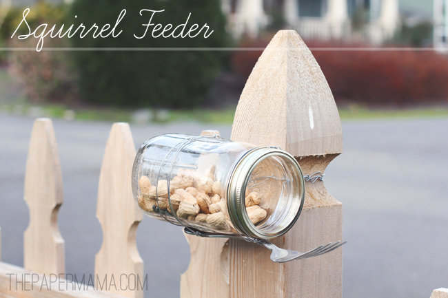 Jar Squirrel Feeder // thepapermama.com