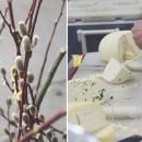 Cheese thepapermama.com