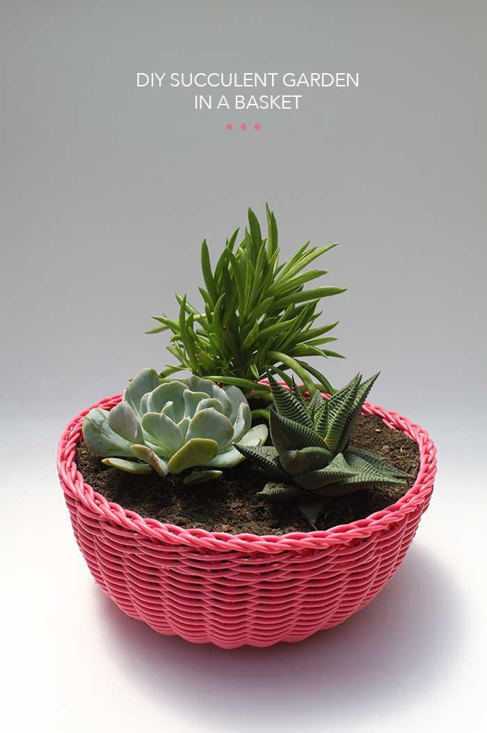 http://thehomesteady.typepad.com/my-blog/2013/07/diy-succulent-garden-in-a-basket.html