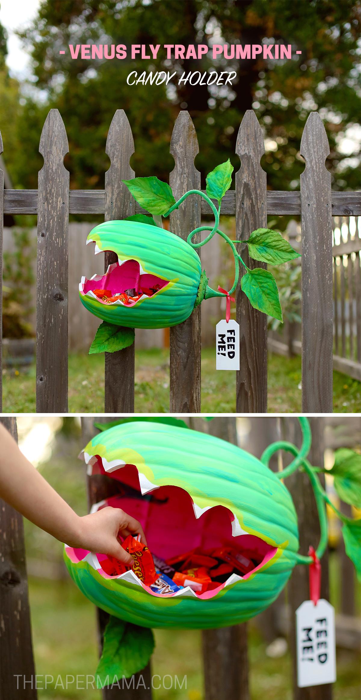 Venus Fly Trap Pumpkin Candy Holder Diy The Paper Mama