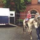 Kiddo Horse // thepapermama.com
