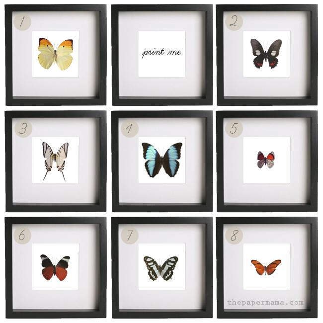 butterfly print, free, freebie