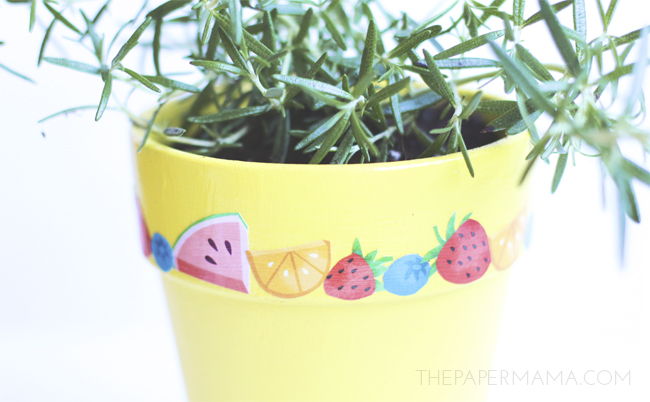 Fruity Mod Podge Planter DIY // thepapermama.com