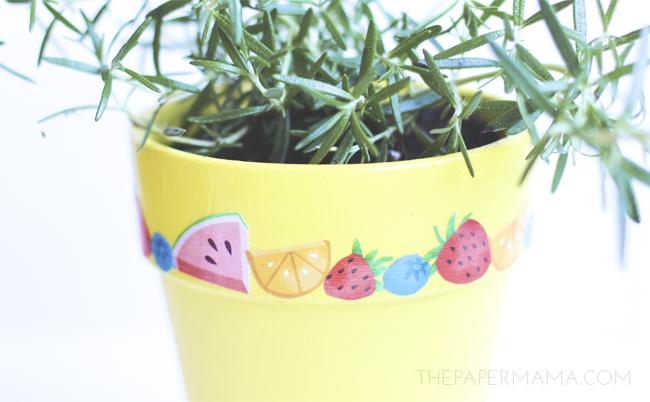 Fruity Mod Podge Planter DIY // thepapermama.com