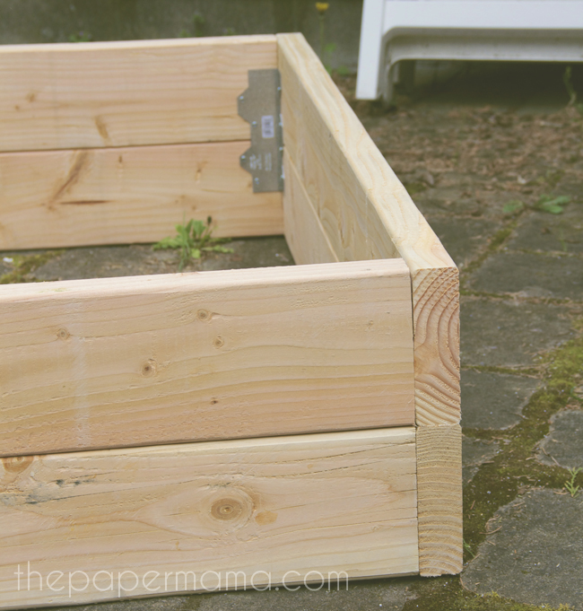 How To Build A Box Garden