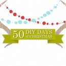 50 DIY Days thepapermama.com