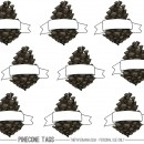 Pinecone Gift Tag thepapermama.com