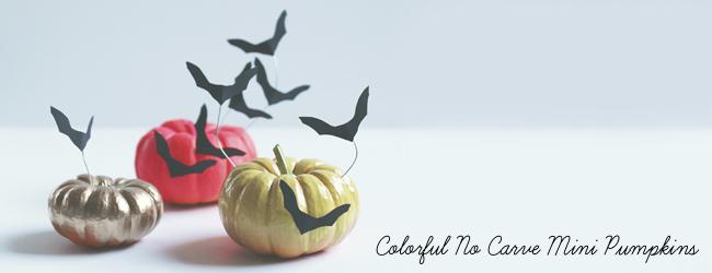 Colorful No Carve mini Pumpkins