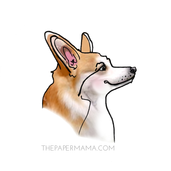 Corgi Profile Illustration // thepapermama.com