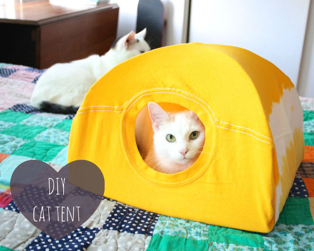 After you're done building a dog house for your pup you will need to make a home for your kitty! Check out how to make this tiny kitty tent on Instructables.