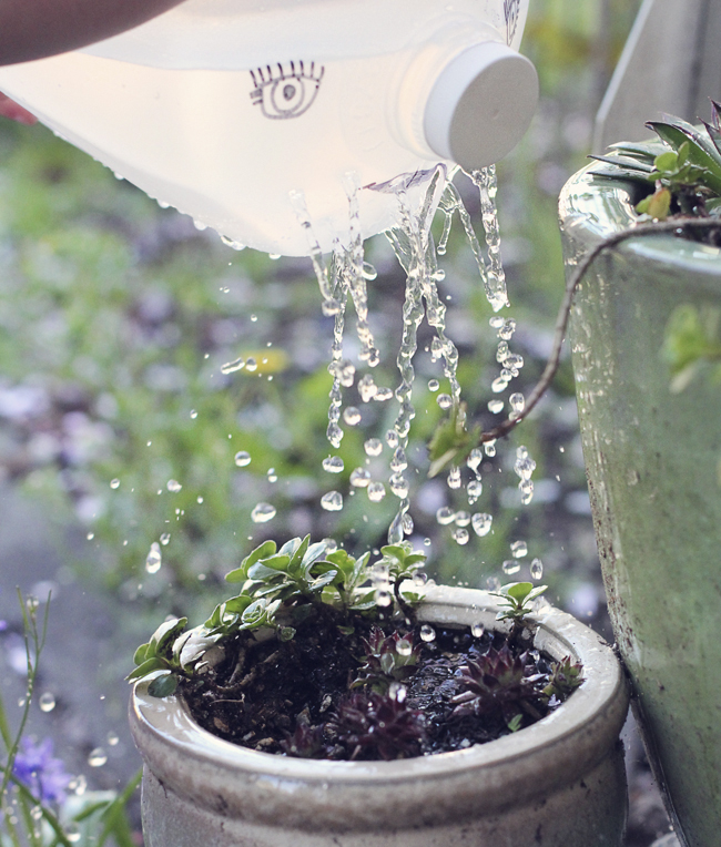 If your kiddo is a bit younger and wants to help you water the garden, this project is for you. I transformed an old milk jug into a kid friendly watering jug. Check it out on The Paper Mama blog.