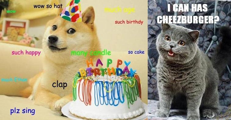 Cat Cake Meme