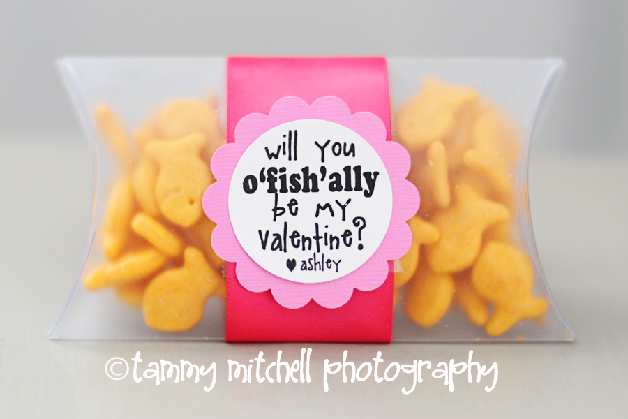 http://www.tammymitchellphotography.com/2011/02/11/make-this-homemade-valentines-o-fish-ally-be-mine/