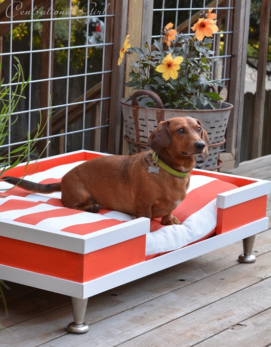 Dog beds don't have to be boring. Make this cool modern dog bed for your home! Found on Centsational Girl.